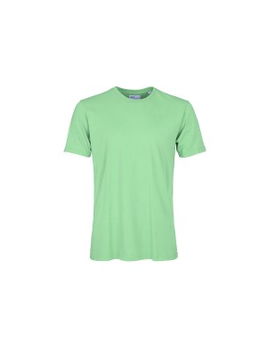 Faded Mint Organic T-Shirt